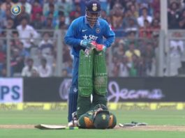 ms-dhoni-faf-fu-plessis-video
